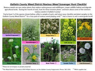 Noxious Weed Checklist