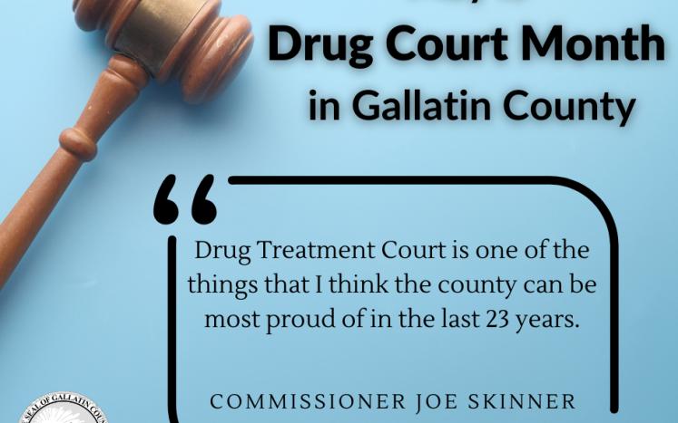 Drug Court Month